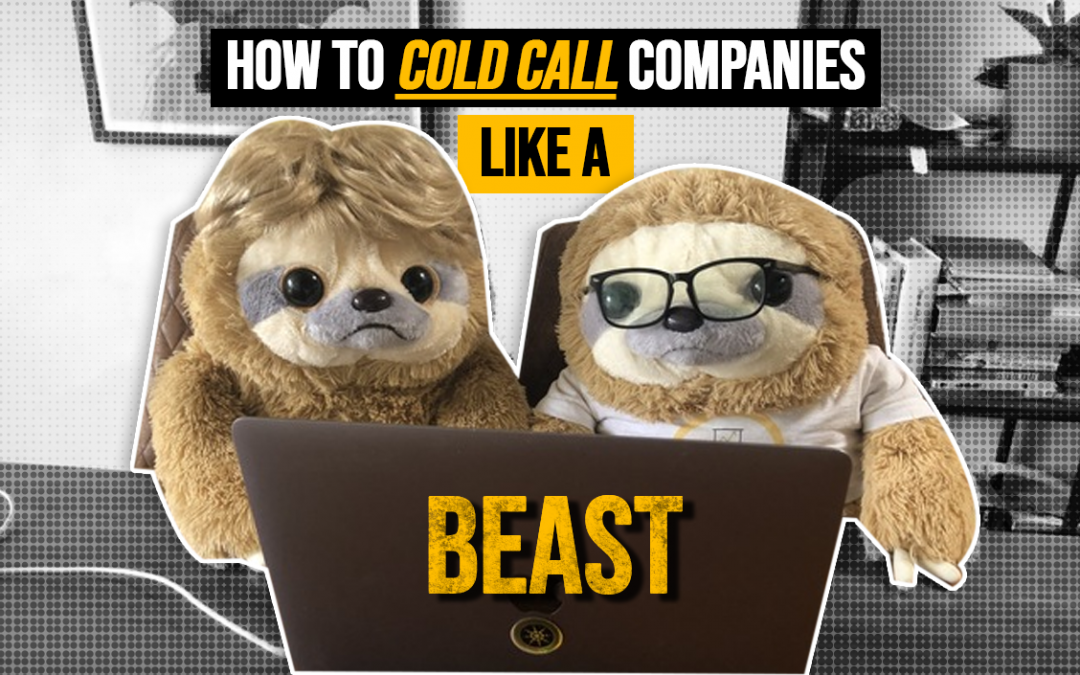 How to cold call companies like a beast!